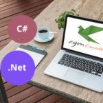 Programmatore C#, .Net su Torino o Milano