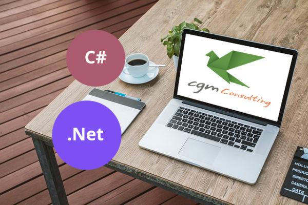 Programmatore C# .Net a Palermo