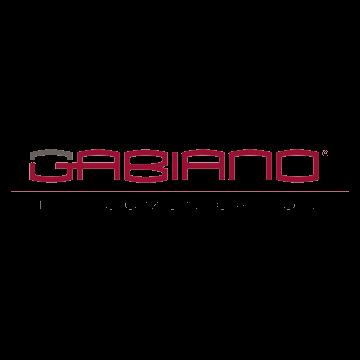 gabiano-telecomunicazioni-transparent-color