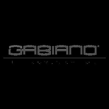 gabiano-telecomunicazioni-transparent