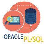 Sviluppatore PL/SQL a Bologna
