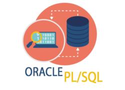 Oracle PL-SQL
