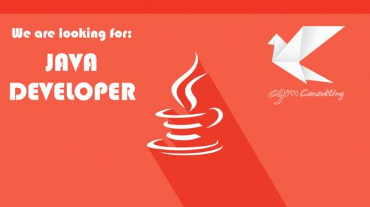 looking for java developer