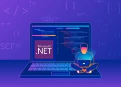 .net developer